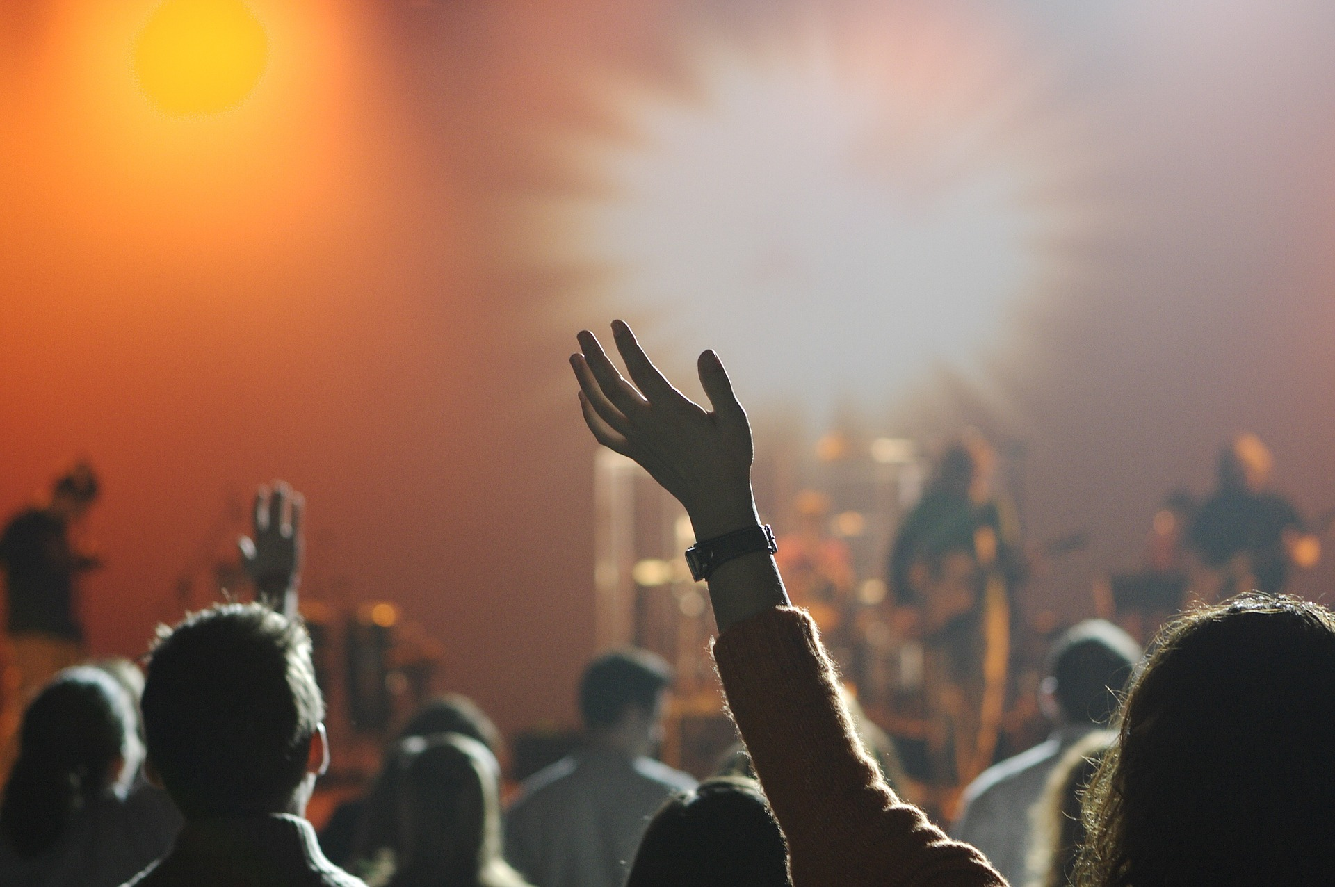 A crowd of people with a band performing in the blurred background