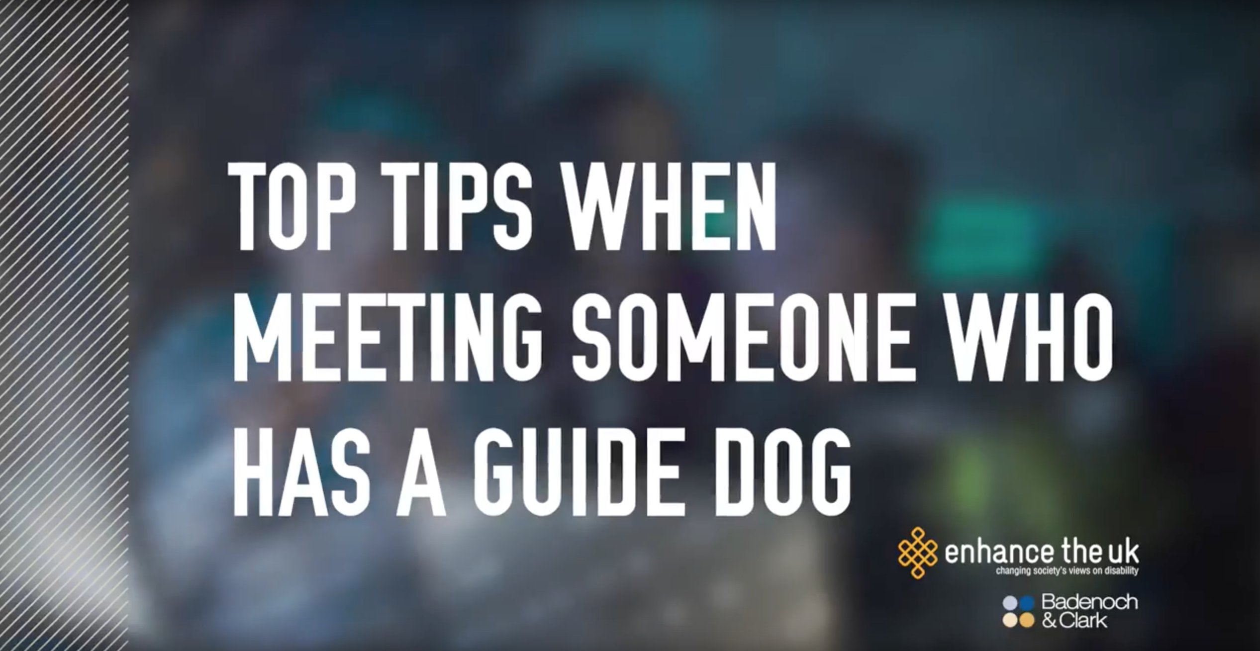 Text reading 'top tips when meeting someone who has a guide dog' from a bespoke training video made for badenoch and clark